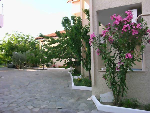 Grcka hoteli letovanje, Tasos, Skala Rahoni, Hotel Filippos, dvorište