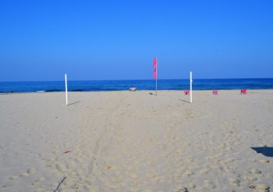 Letovanje Nei Pori, apartmani Nei Pori, plaža